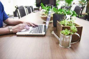 仕事の環境作りで意識したい「緑視率」とは! 取り入れやすいおすすめグリーングッズまとめ